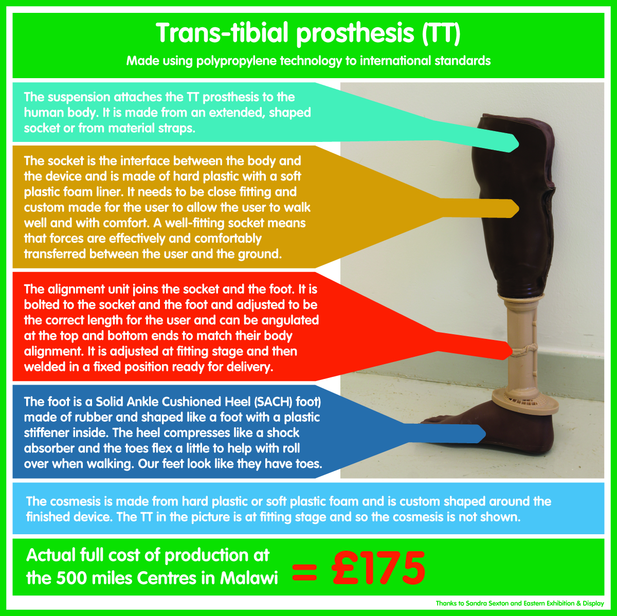 Trans-tibial Prosthesis